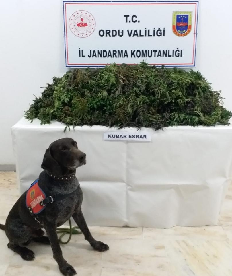 Jandarma Komutanlığının Basın Duyurusu